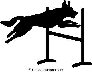Agilidad de perro saltando sobre el obstáculo