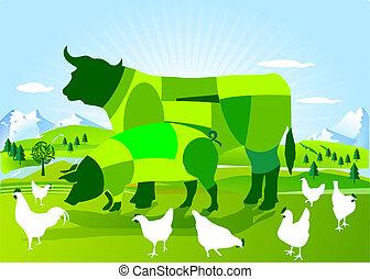 agricultura, bio-dynamic