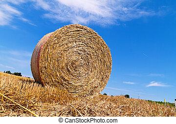 Agricultura. Caja con fardos de paja
