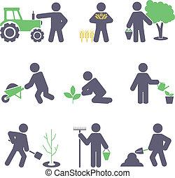 Agricultura. Colocad iconos