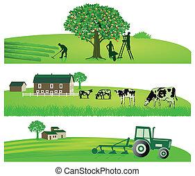 agricultura, jardín