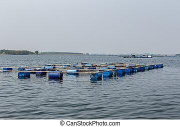 agricultura, montenegro, acuacultura, tailandia, asia