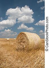 Agricultura - pajar
