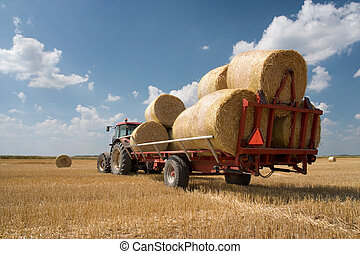 Agricultura - tractor