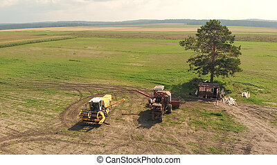 agricultura, vista, segadores, campo, aéreo, de par en par, marrón, zángano, combinar