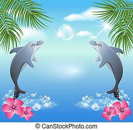 agua, saltos, delfines