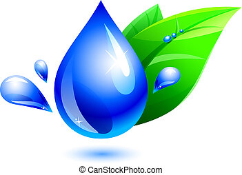 Agua y hoja