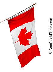 aislado, bandera, fondo blanco, canadá, nacional