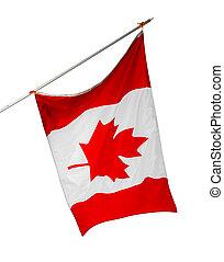 aislado, nacional, canadá, bandera blanca, plano de fondo