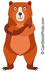 aislado, vector, plano de fondo, character., caricatura, blanco, oso