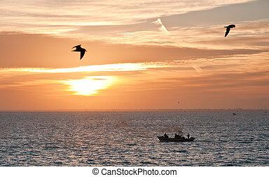 Al atardecer, las aves marinas y el barco de pesca
