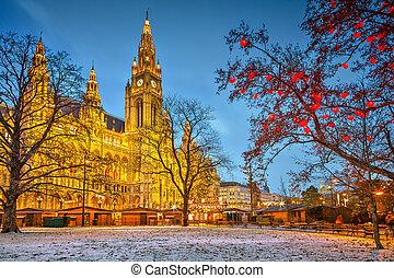 Al ayuntamiento de Viena