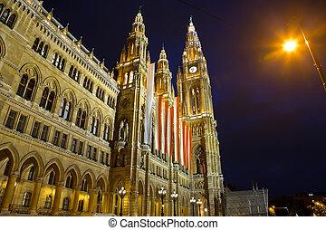 Al ayuntamiento en Viena