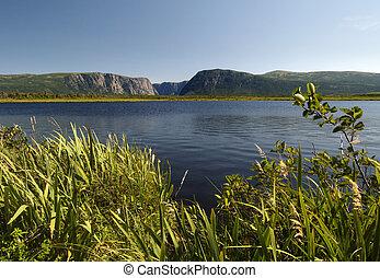 Al estanque del oeste del arroyo