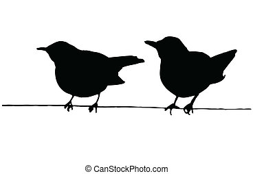 alambre, dos pájaros