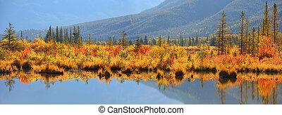 alberta, árboles, otoño, bermellón, lagos, canadá, arbustos