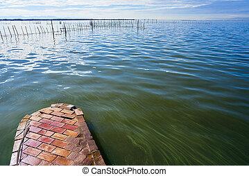 Albufera del lago Valencia en España