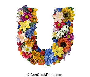 Alfabeto de flores U