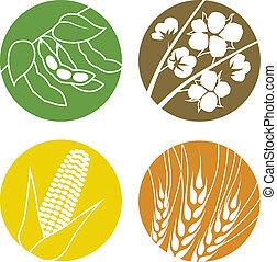 algodón, maíz, trigo, sojas