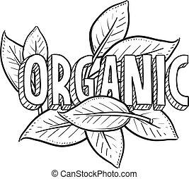 alimento, bosquejo, orgánico