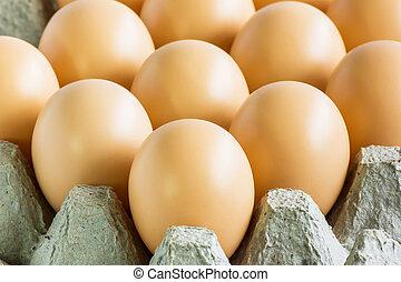 alimento, crudo, huevo