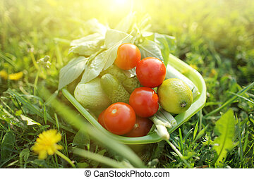 alimento, orgánico, aire libre