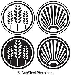alimento sano, grano, símbolos
