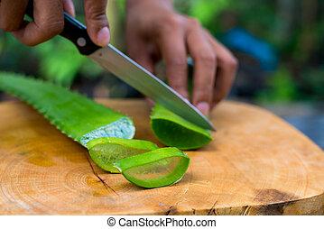 Aloe vera rebanada en la mesa