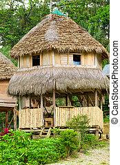 Alojamiento de la selva en Amazonas Basin Ecuador