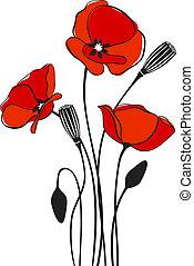 amapola, plano de fondo, floral