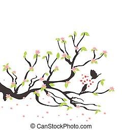 Amar aves en el ciruelo de primavera