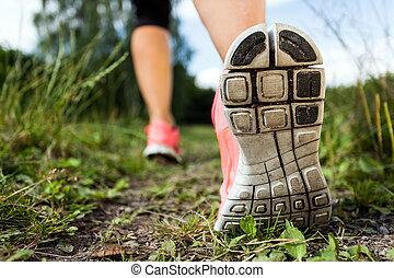 ambulante, bosque, ejercitar, corriente, aventura, piernas, o