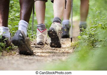 ambulante, shoes, gente, madera, viajando arduamente, fila