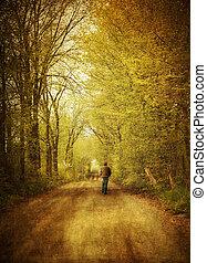 ambulante, solo, camino, hombre, país
