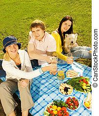 Amigos en el picnic