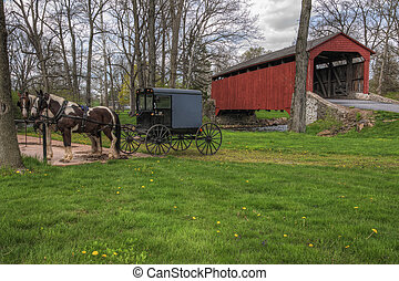Amish buggy estacionado en el puente cubierto