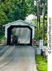 Amish cubrió el buggy de puente pasando por él