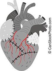 anatómico, órgano, puntadas, corazón