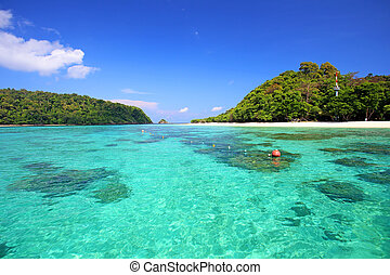 andaman, rok, tropical, mar, koh, playa, tailandia