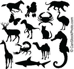 Animal del vector mundial