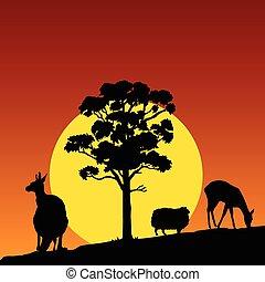 Animal en el vector de color natural