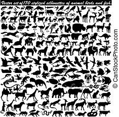animal, estilizado, vector, conjunto, aves, 170, siluetas, fish.