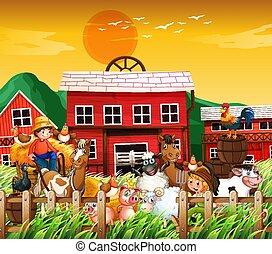 animal granja, ocaso, escena de la naturaleza, plano de fondo, casa