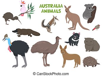 animales, australia, conjunto, vector, aislado, graphics., blanco, fondo.