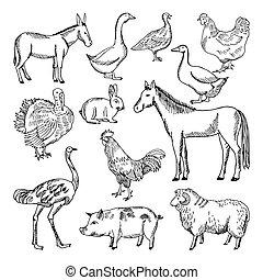 Animales de granja a mano, estilo dibujado. Ilustraciones de vectores