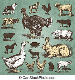 Animales de granja de colección (vector)