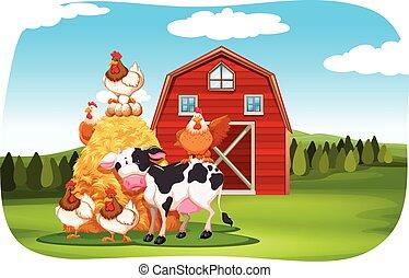 Animales de granja en el campo