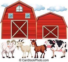 Animales de granja y granjas