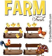 Animales de granja y señales