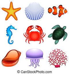 Animales marinos.